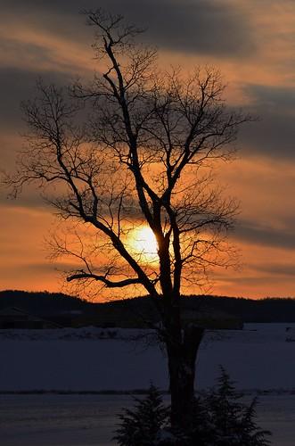 sky sun mountain snow tree clouds sunrise silhoettes tamron