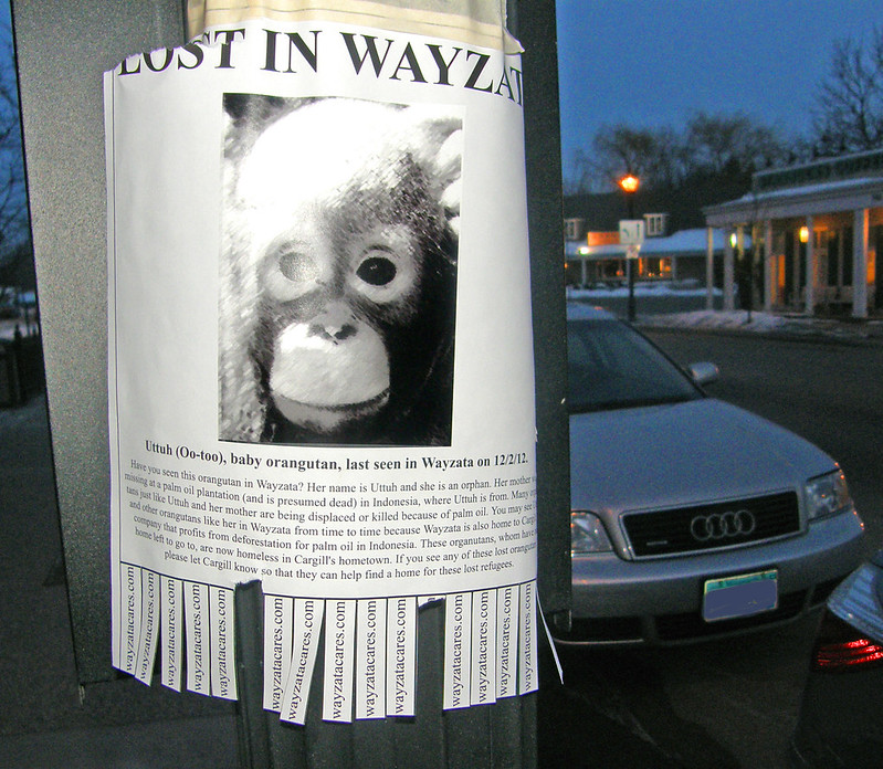 lost in wayzata