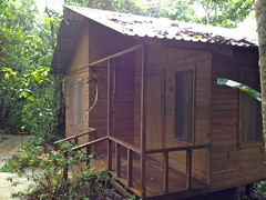 building, garden buildings, hut, cottage, log cabin, outhouse, shed,