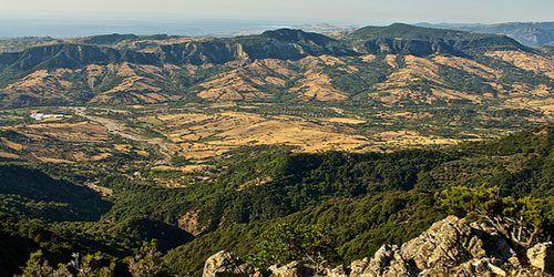 Il Parco Nazionale dell'Aspromonte verso il paniere dei prodotti