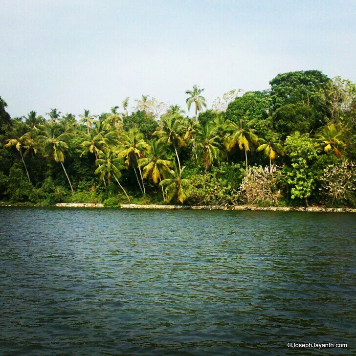 Kerala Places To Visit: Pl Suggest Some Nice Places In Kerala And Best Time For