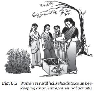 NCERT Class XI Economics: Chapter 6 – Rural Development