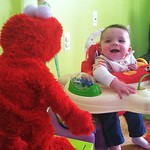 2/3 Something beginning with 'E.' Entertained by Elmo.