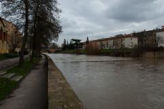 La Moselle - Près du Pont Saint Georges