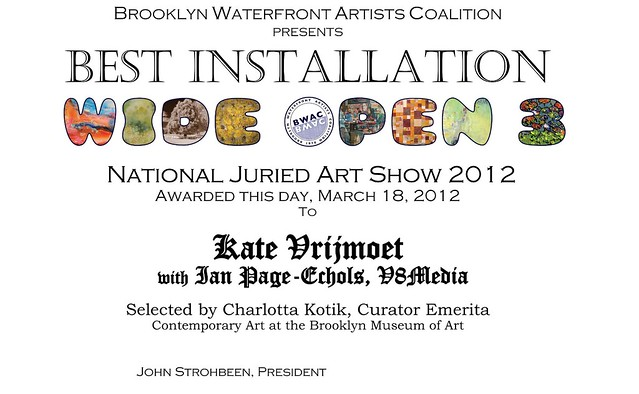 Best Installation 2012 Wide Open National Juried Art Show