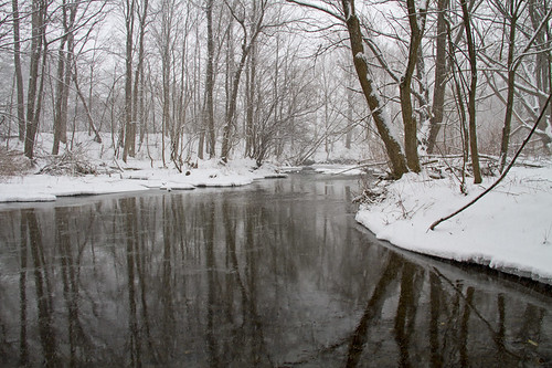 life fish snow reflection nature water rural creek canon woodland landscape fishing alone quiet peace country snowstorm calming peaceful calm upstatenewyork snowing 2013 skaneatelescreek