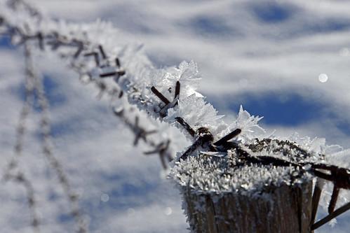 Der Winter hat alles im Griff ~ EXPLORE