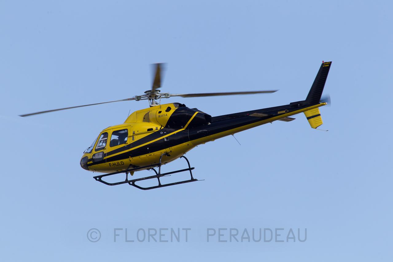 Spotting Toulouse Blagnac LFBO TLS Fevrier 2013 8489215979_b6fb45d6ae_o