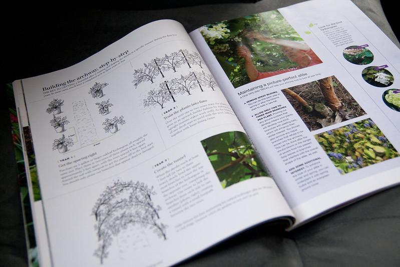 fine gardening - instrucx