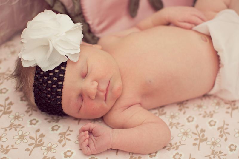 Amelia Austin Newborn Session-0008