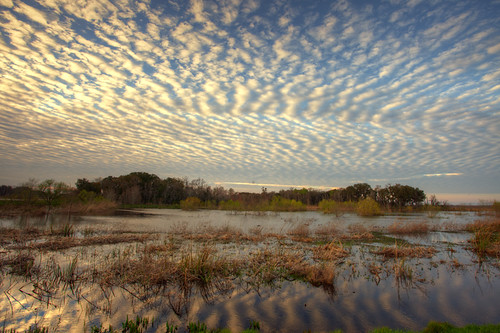 sky clouds landscape marsh nationalwildliferefuge savannahnationalwildliferefuge