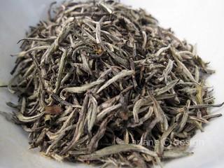 Teaja Yaletown/Silver Needle Private Reserve tea, China