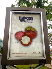 expose yourself outdoor