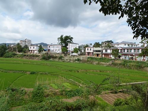 Hainan13-Wuzhishan-Montagne (125)