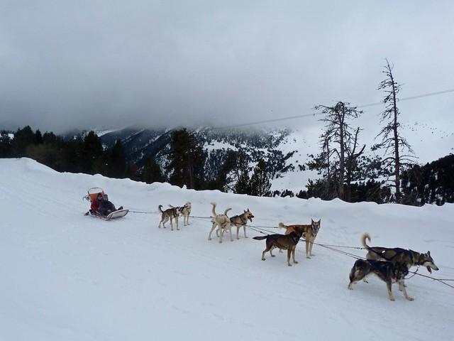 Trineo de perros en Andorra
