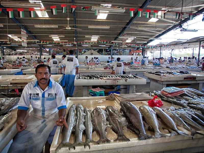 Dubai Fish Market #04