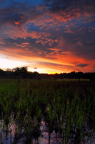 sunset landscape senja