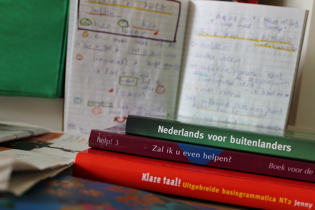 The best tips to learn Dutch: My experience of grasping the language