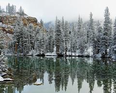 Yosemite High Country Morning, 2015