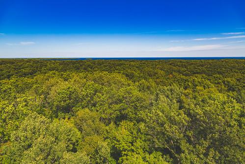 kathio kathiostatepark lakemillelacs millelacskathio millelacskathiostatepark millelacslake minnesota observationtower tower trees onamia unitedstates us