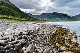 Tromsø Landscape
