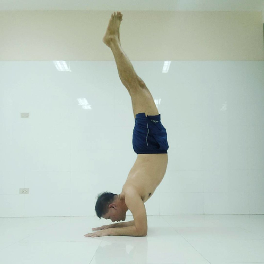 #PinchaMayurasana #Yoga