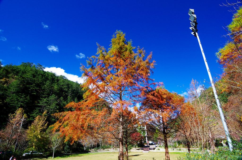 K01-武陵風光
