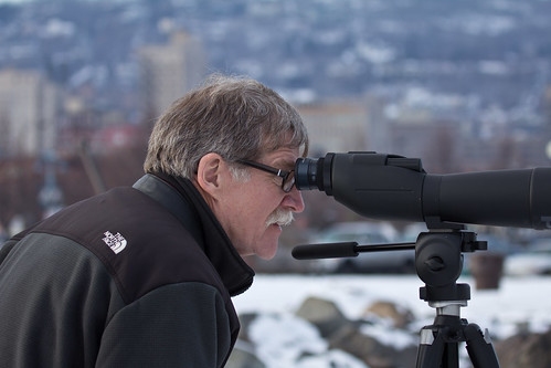 Peder Svingen looking at Duluth's Slaty-backed Gull