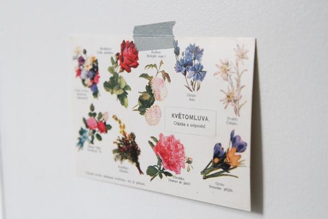 flowerpostcard9957