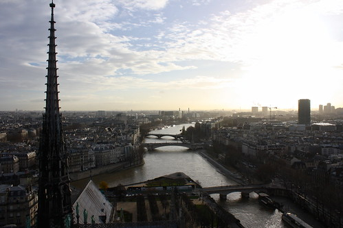 Paris, France, seen from Notre-Dame Cathedral