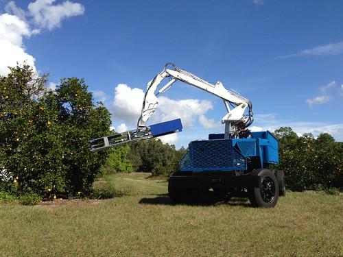 Citrus Harvesting Robot