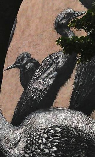 Graffiti_Vögel