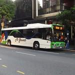 Mt Gravatt Bus Service