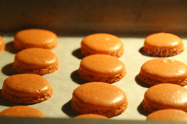macaron in oven macaron with feet