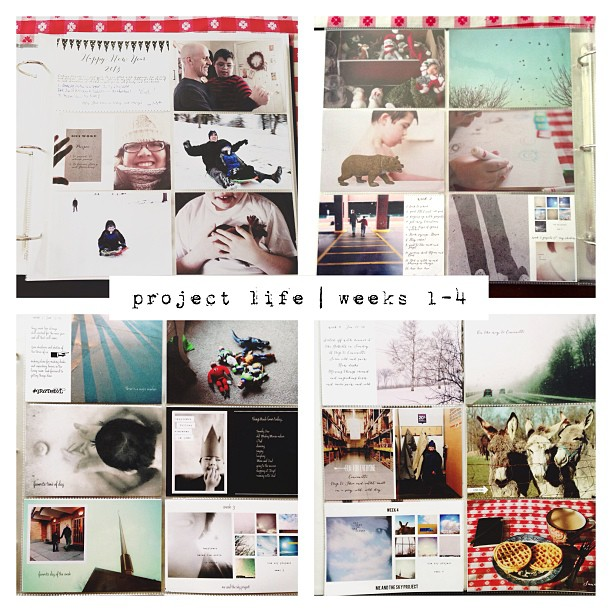 Trying project life again this year. I failed last year when I lost all my photos when my computer crashed....sigh. I don't think my heart has healed from that