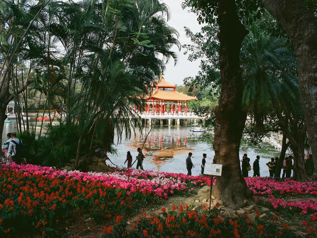 Pantax 645N首拍之台南百花季