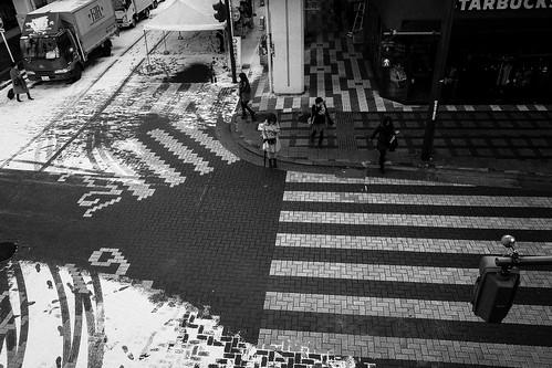 niigata monochrome 44