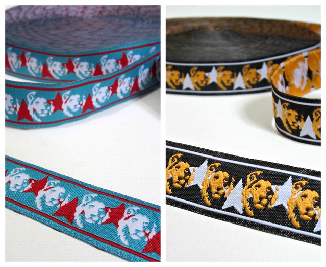 Lion Ribbon Collage