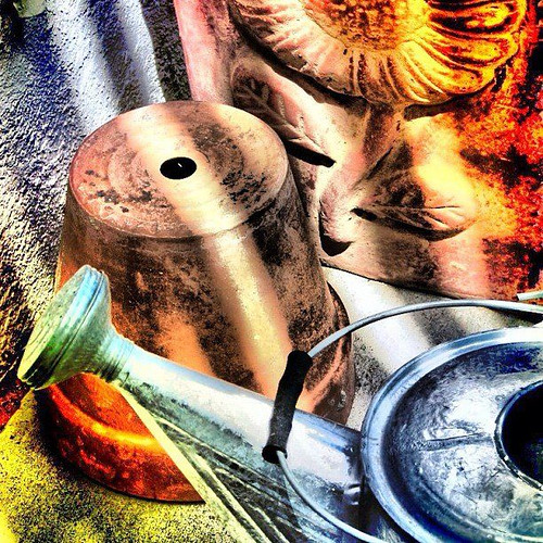 Still Life with Pot and Watering Can by rraabfaber