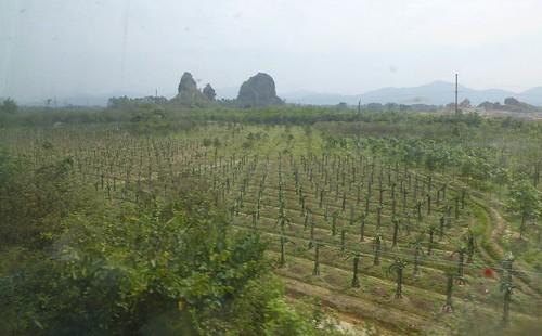 Hainan 13-Guangzhou-Haikou-Train (208)