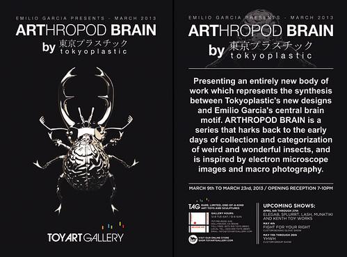 ARThropod-Brain-FLYER