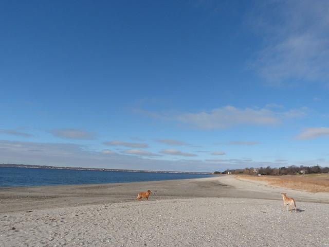 beach3_march4
