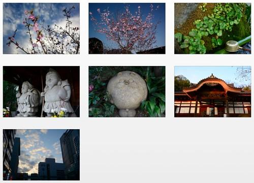 Nikon D7100 plus 16-85mm VR -- Full-resolution photos