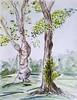 dating: the arboretum version