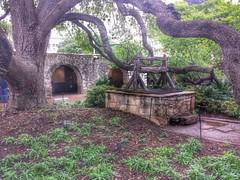 The Alamo- San Antonio TX 2015 (2)