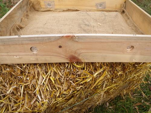 beehive humidity box