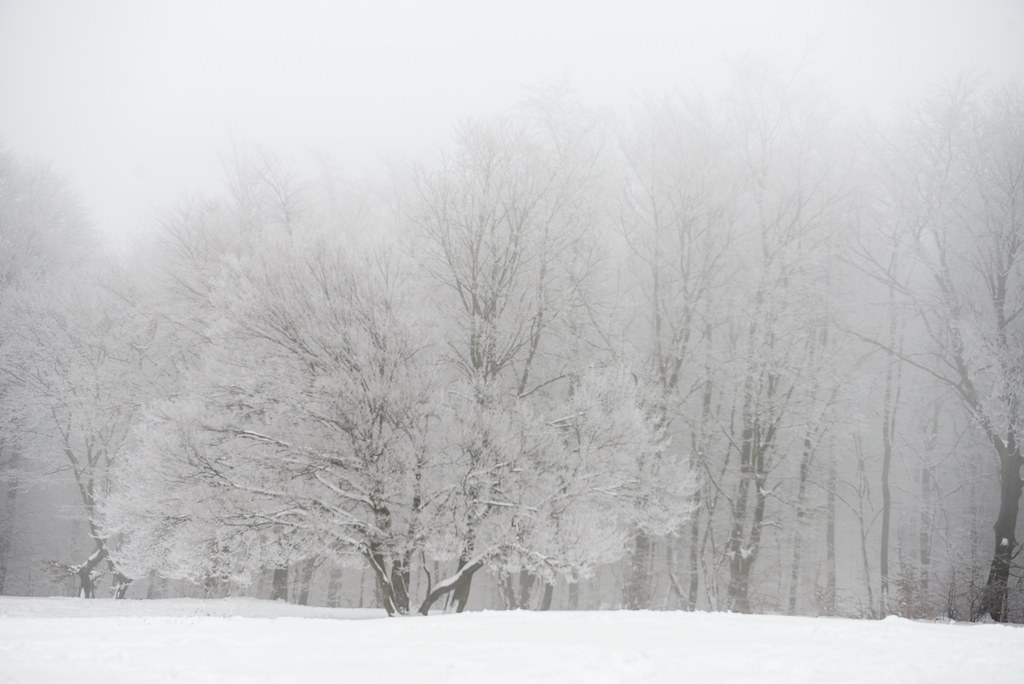 winterwonderland-42
