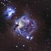M42 - Orion Nebula by Hanoch Hemmerich