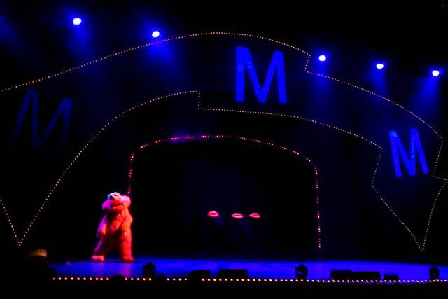 Sesame Street Live-015.jpg