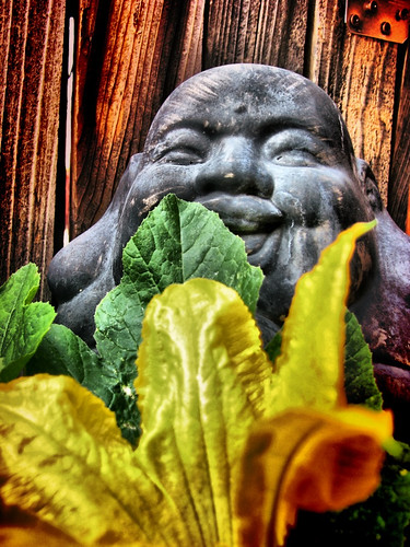 Buddha with Squash Blossom by rraabfaber
